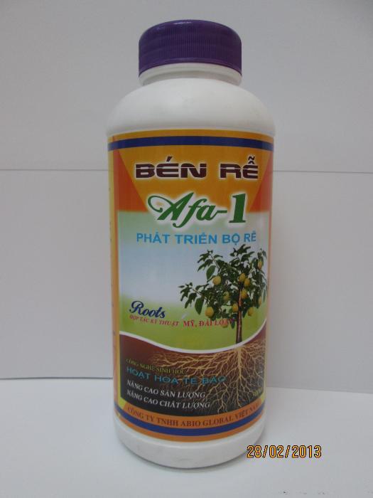 AFA 1 - Bén rễ